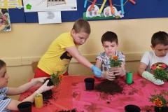 warsztaty-ogrodnicze-14-03-20