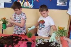 warsztaty-ogrodnicze-19-03-20